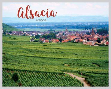 Vinos de Alsacia