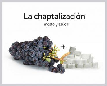 chaptalizacion
