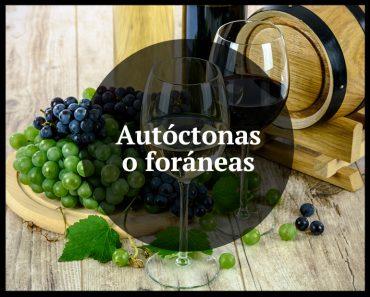 autoctonas_vs_foraneas