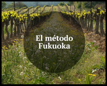 metodo_fukuoka