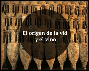 origen de la vid y el vino