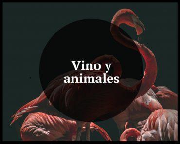vino y animales
