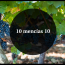 10 mencías 10